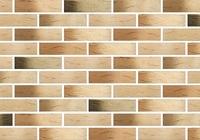 Кирпич керамический лицевой одинарный Флоренция-BUNT-Руст (утолщенная стенка) м-150